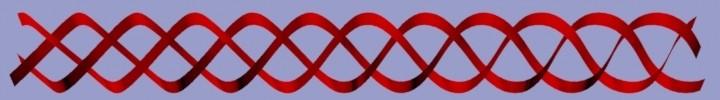 braidedribbon